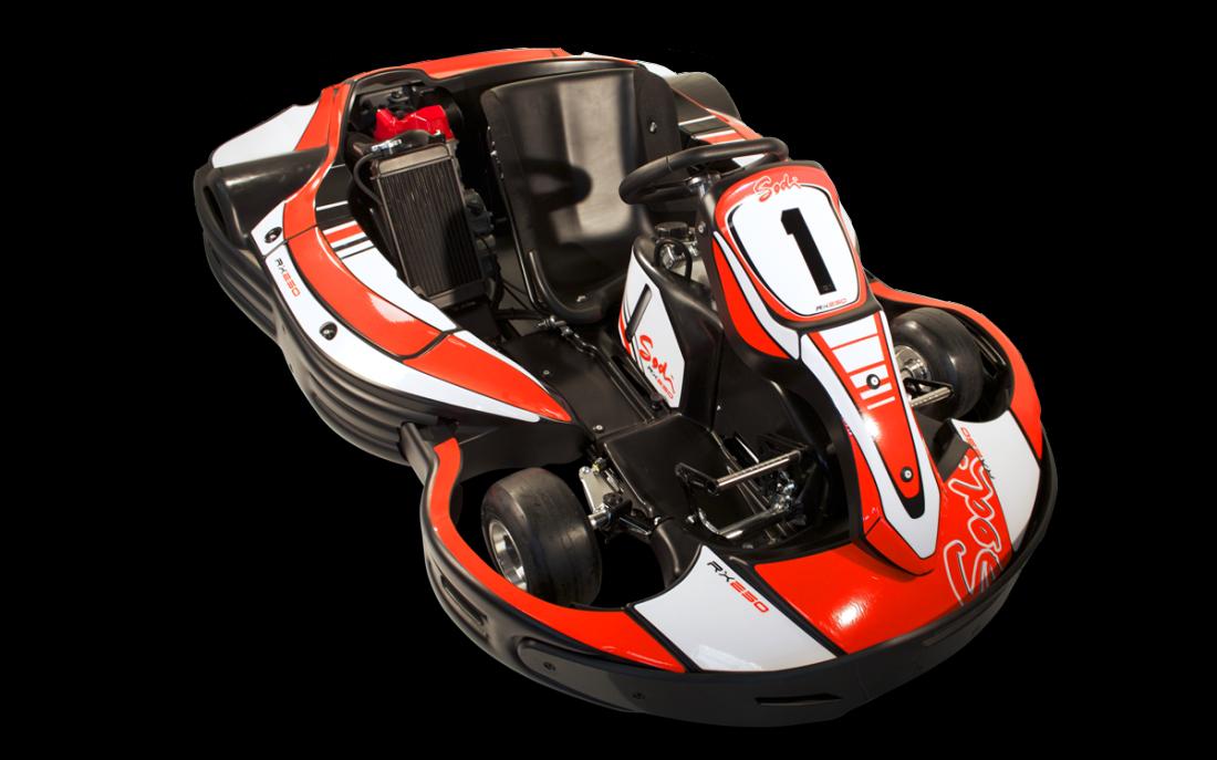 RX250 - Sportif & moderne - Image 1