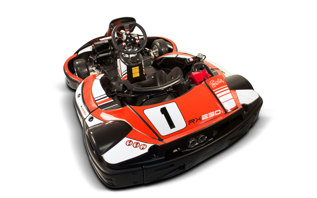 RX250 - Sportif & moderne - Image 2