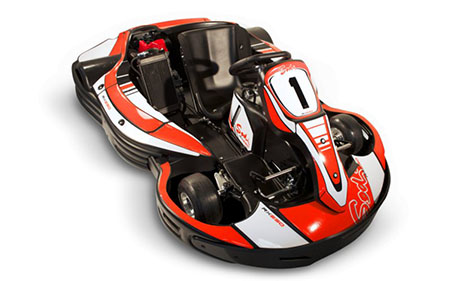 RX250 - Sportif & moderne